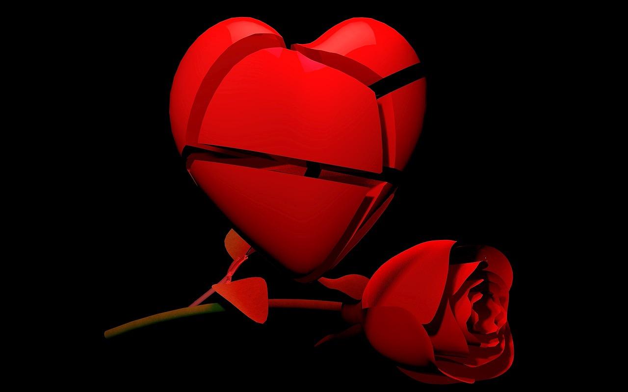 heart, rose, broken
